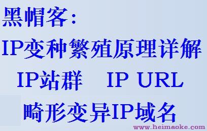 IP变种繁殖站群原理详解之IP站群、IP URL、畸形变异IP域名